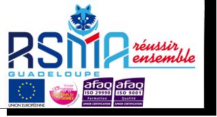 RSMA de la Guadeloupe